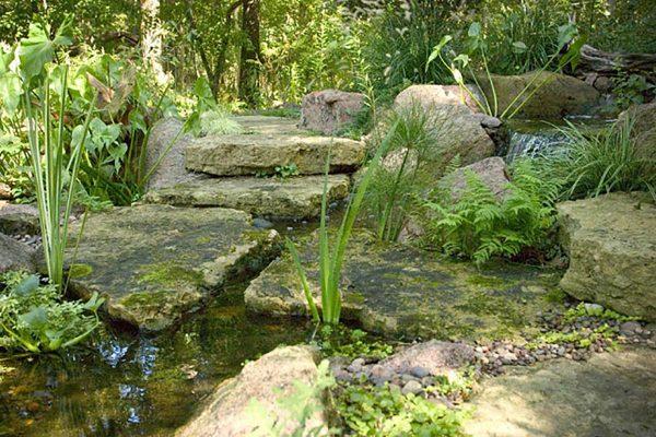 aged moss
