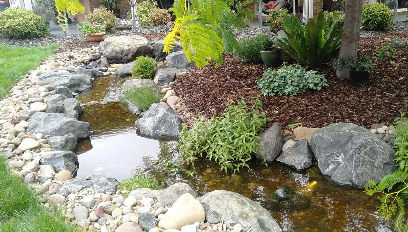 Pondless creek plantings