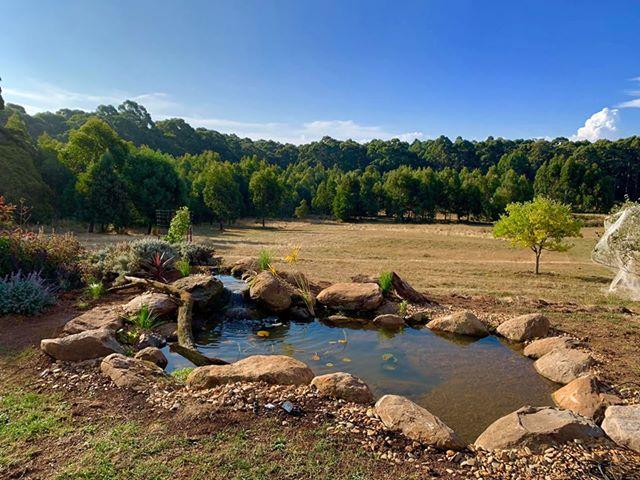 Bullarto Pond
