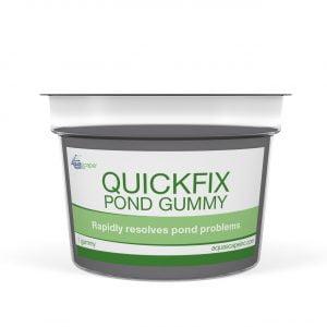 Pond Gummy