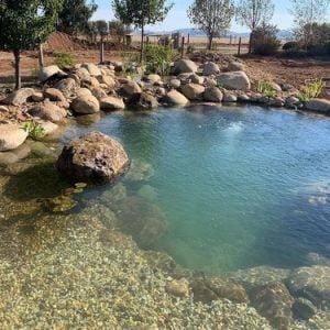 Recreation pond kit