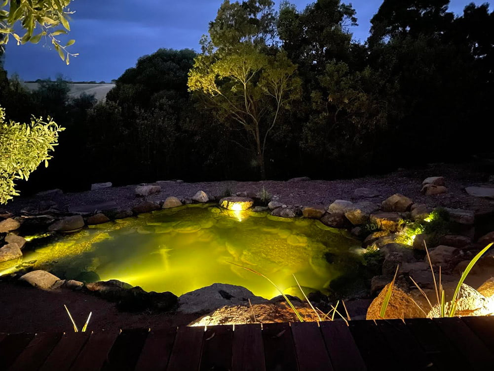 Recreational pond at night