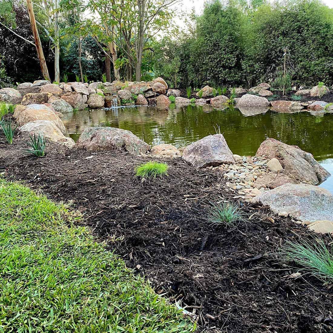 Large Ecosystem pond2